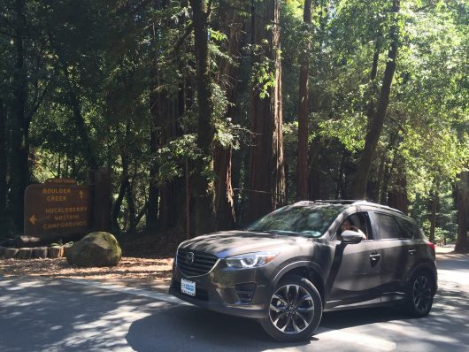2016 Mazda CX-5 in Big Basin Redwoods, Boulder Creek, CA