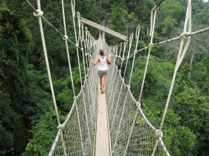 Crossing the canopy bridge in Kakum National Park, Ghana