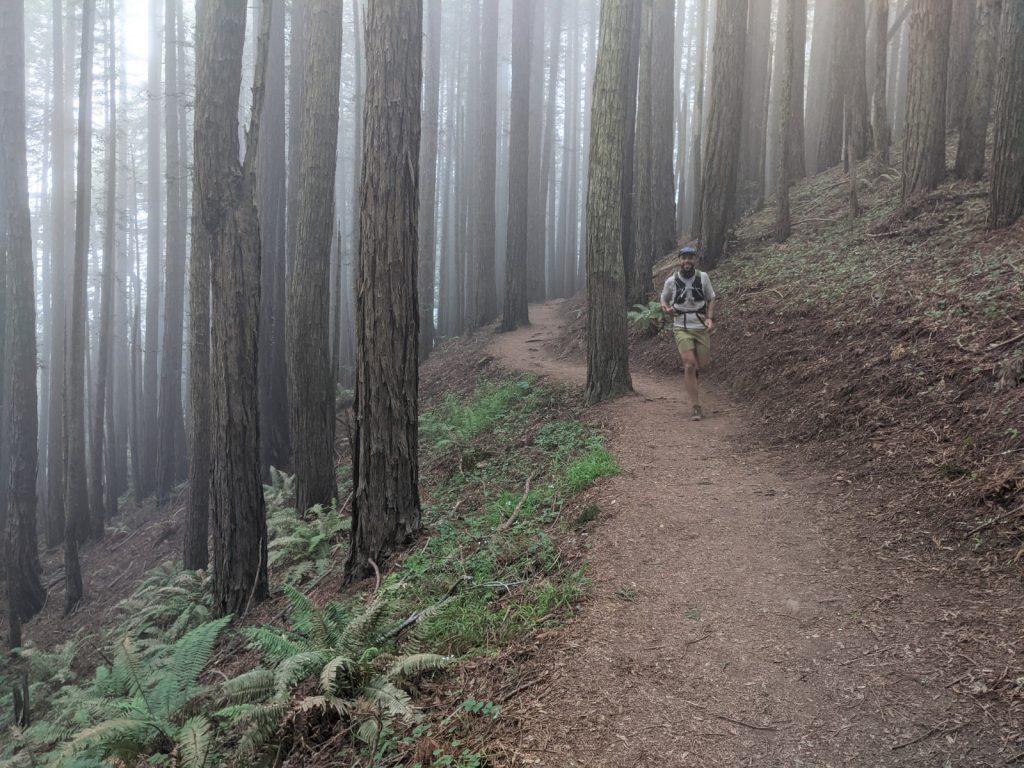 John Vantine running Muir Woods